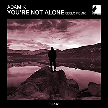 You're Not Alone (Seelo Remix)