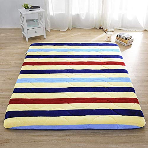 Tatami Futon Mattress, Tatami Mattress Single Double Antibacterial Thickened Mat For Student Dormitory Family Room B 90x200cm (35x79inch)