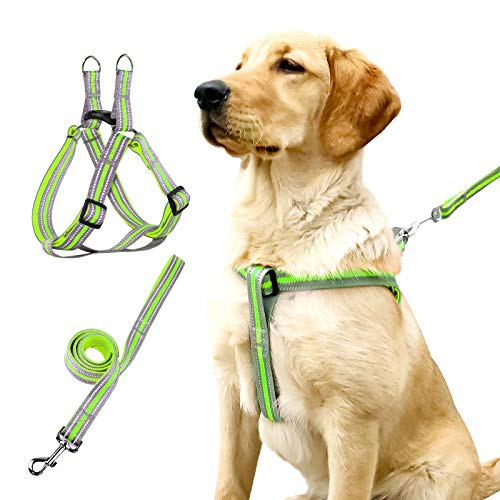 No Pull Dog Harness and Leash Set Stops Pets from Pulling and Choking on Walks - Adjustable Comfortable Control for Halter Harnesses Works Small Medium Large Dogs Easy Walk Harness