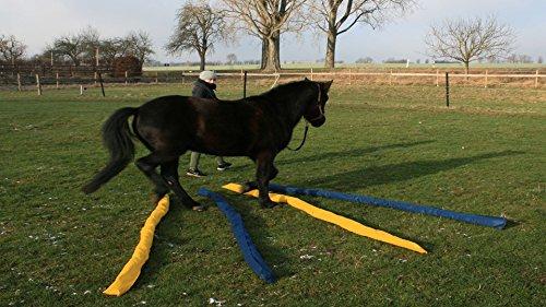 Longier-Hilfe für Pferde, blau & gelb, 4 Stk., 2,8m lang, Pferdeausbildung, Richtläufer, Bodenarbeitshindernis, Hindernis-Stangen - 4