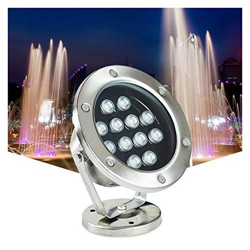 AMDHZ Brunnenlichter IP68 Wasserdicht Pool Scheinwerfer Wasserspiel Lichter 24V LED Unterwasserscheinwerfer Voller Edelstahl Farbige Landschaftslichter (Color : Warm Light, Leistung : 24W)