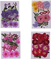 押し花ミックスオーガニックナチュラルドライフラワー、4パック美しいナチュラルプレスドライフラワー押し花-DIYフローラルアートクラフトDé corソープキャンドルフィラーオーナメント