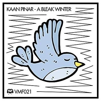 A Bleak Winter