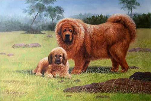 Mastiff Pet Dog Diy Pintura Digital Por Número Para Niños Principiantes Sobre Lienzo Pintura - 16 X 20 Pulgadas (Sin Marco)