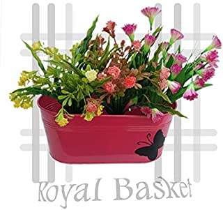 Royal Basket Butterfly Oval Railing Planters (Pink, Pack of 1)…