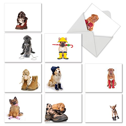 The Best Card Company - 10 Blank Dog Greeting Cards for All Occasions (4 x 5.12 Inch) - Boots Made For Puppies M2980OCB