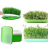 LVPY - Set di 5 cestini idroponici a due livelli, con coperchio per giardino e casa...