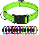 TagME Collar Perro Ajustable,Collar Nylon Reflectante,para Caminar Correr Entrenamiento,para Perros Pequeños,Verde,1.5cm De Ancho