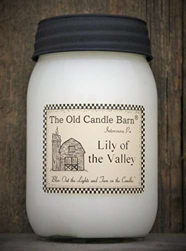 Lily of The Valley 16 Oz Jar Candle - Made in The USA - Blow Out The Light and Turn On The Candles!