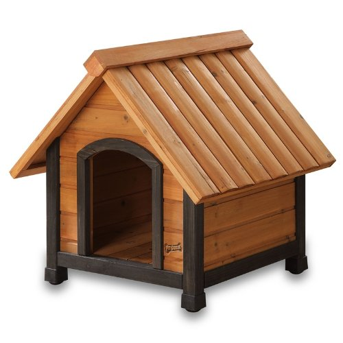 Pet Squeak Dog House with Dark Frame