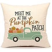 4TH Emotion Fall Pumpkin Truck Throw Pillow Cover Cushion Case 18 x 18 Inch
