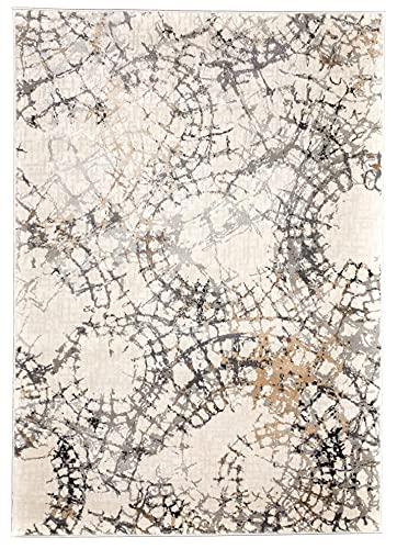 Tapis Design Spiders Web Moderne en 4 Tailles idéal pour Salon, Chambre de Jeunesse ou Chambre à Coucher Moquette épaisse, de qualité supérieure (120 x 170 cm)