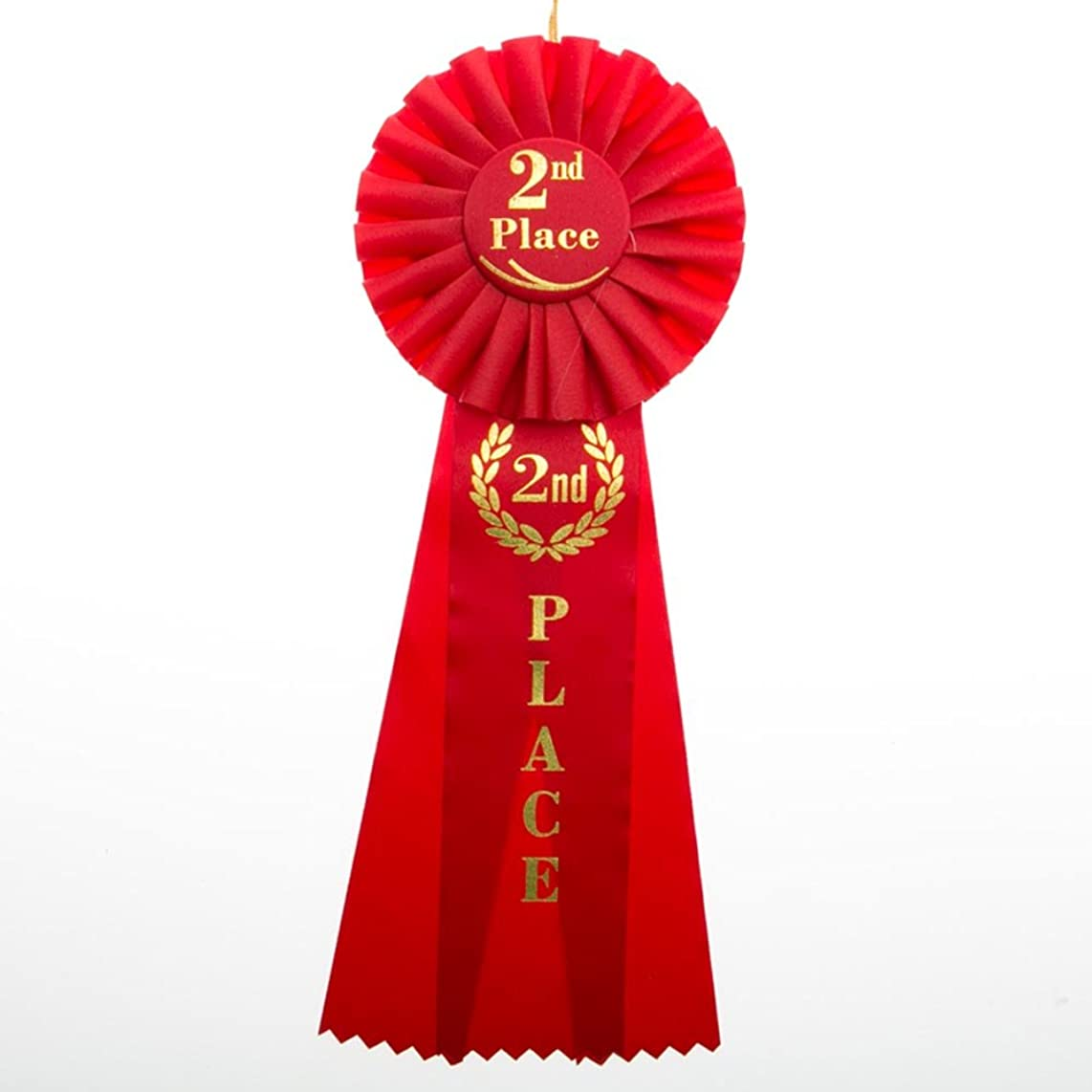 Hayes Specialties Corp. 2nd Place Rosette Ribbon