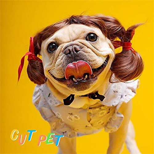 Peluca para Mascotas Peluca de Perro Cola de Caballo Rubia para Fiestas de Cosplay de Vacaciones Peluca Linda, Con Correa de Barbilla Elástica Ajustable (D)