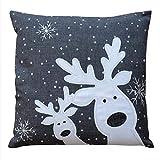 Raebel Kissenhülle 40 cm x 40 cm Stickerei Lustiger Elch - grau Weihnachten Winter