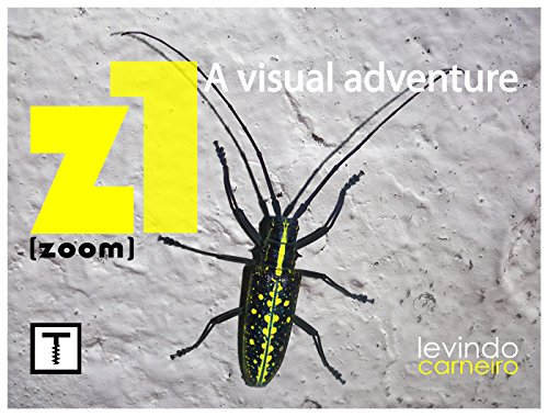 Z1: zoom (English Edition)