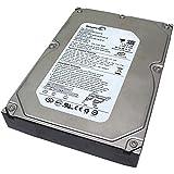 Seagate DB35 ST3300820ACE 300 GB Internal Hard Drive