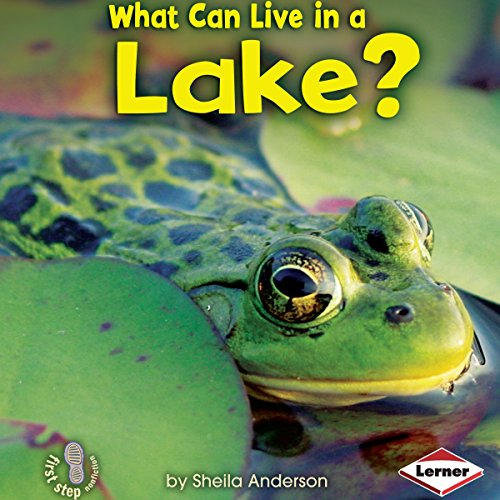 What Can Live in a Lake? copertina