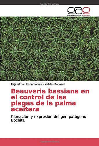 Beauveria bassiana en el control de las plagas de la palma aceitera: Clonación y expresión del gen patógeno Bbchit1