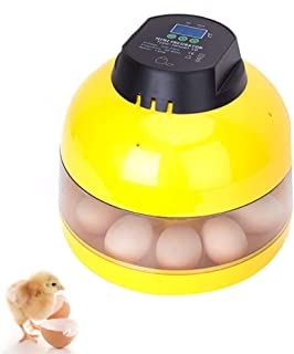 ZCXBHD Egg Incubator 10 Eggs Mini Digital For Chicken Goose Duck Poultry Hatcher With Egg Tray Experimental Education