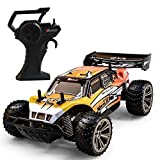 Tecesy 1/16 Scale RC Car Monster Truck, 20 KM/H RC Truck for Kids 2.4GHz Remote Control RC Trucks Off Road Waterproof RC Cars for Boys,Orange