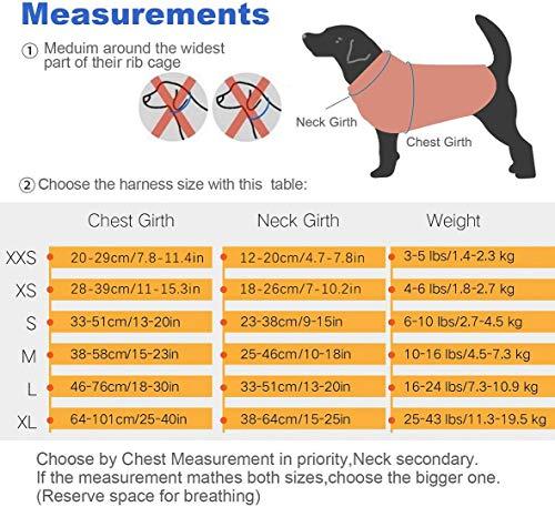 ThinkPet No-Pull Hundegeschirr – Atmungsaktiv Vest Geschirr Mesh Brustgeschirr für Hunde, reflektierend Verstellbare Softgeschirr Sicher Kontrolle, Geringes Eigengewicht, Leichtes Anlegen - 7