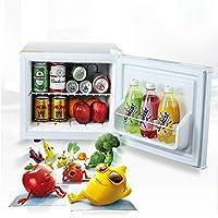 Urhomy ミニ冷蔵庫 冷蔵庫 小型 家庭用冷蔵庫 ミュート冷蔵庫 車載用小型冷温庫 省エネ 軽量 エコタイプ