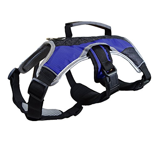Dog Walking Collar or Harness
