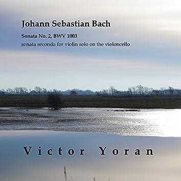 Bach: Sonata No. 2, BWV 1003 Sonata Seconda for Violin Solo on the Violoncello