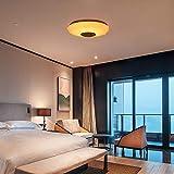 Immagine 1 bioaley lampada da soffitto con