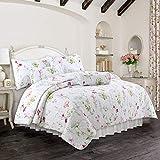 Cozy Line Home Fashions Light Pink Blue Flower Quilt Bedding Set, Coverlet, Bedspread (Carlotta Floral, Full/Queen - 3 Piece)
