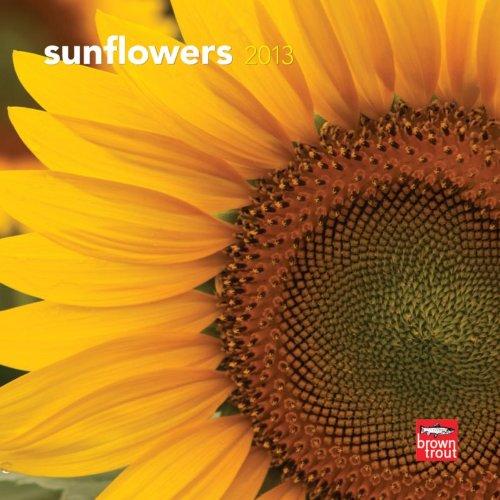 Price comparison product image Sunflowers 2013 7X7 Mini Wall