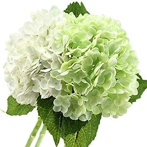 FiveSeasonStuff Real Touch Silk Hydrangea Flowers, 2 Large Long Stem Artificial Flowers for Floral Arrangements (Mixed Summer White & Spring Green)