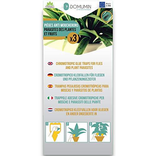 3 trampas medias amarillas para mosquitos de plantas y frutas [pulgones, Aleurodas,...