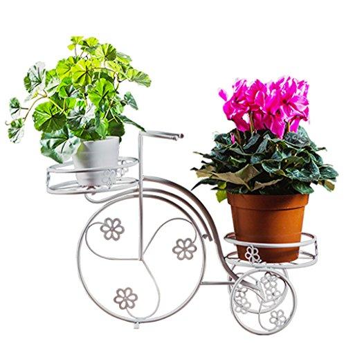 FZN Fleur en Fer forgé Fleur créative Balcon Salon Bureau au Sol à l'intérieur et à l'extérieur Panier à Bicyclette Pots de Fleurs
