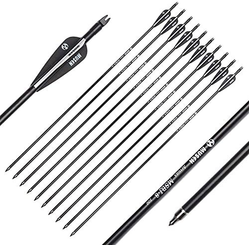 chengchuang 30 Inch High Strength Archery Fiberglass Arrows Spine 500 with Replaceable Arrowhead Recurve Compound Bows Archery Hunting Practive (6pcs)