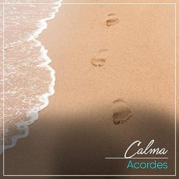 # 1 Album: Calma Acordes