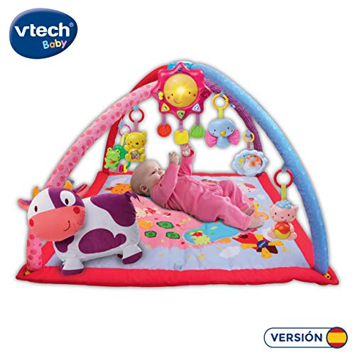 VTech Baby – Decke Convertible in Fitnesscenter Rosa