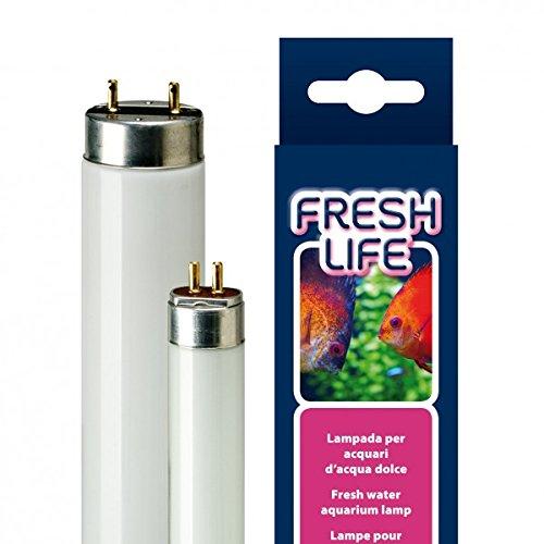 Ferplast Néon Freshlife - 24 W