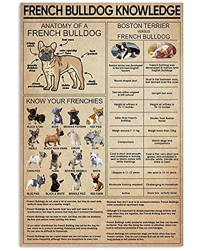Eeypy Personalized Tin Signs French Bulldog French Bulldog Knowledge Metal Sign, Retro Wall Art, Home Decoration Sign Anniversary Birthday Metal Signs for Garage Man Cave