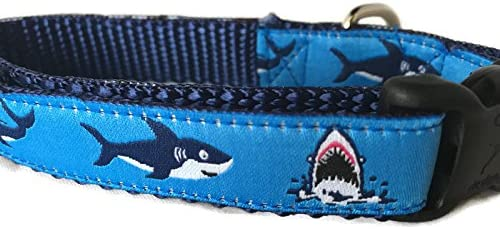 Ocean Dog Collar Caninedesign Quick Virginia Beach Mall Wid inch Buckle Release New mail order 1