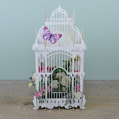 The Flower Cage - 3D Pop-Up Birthday Card Paper D'Art (Main)