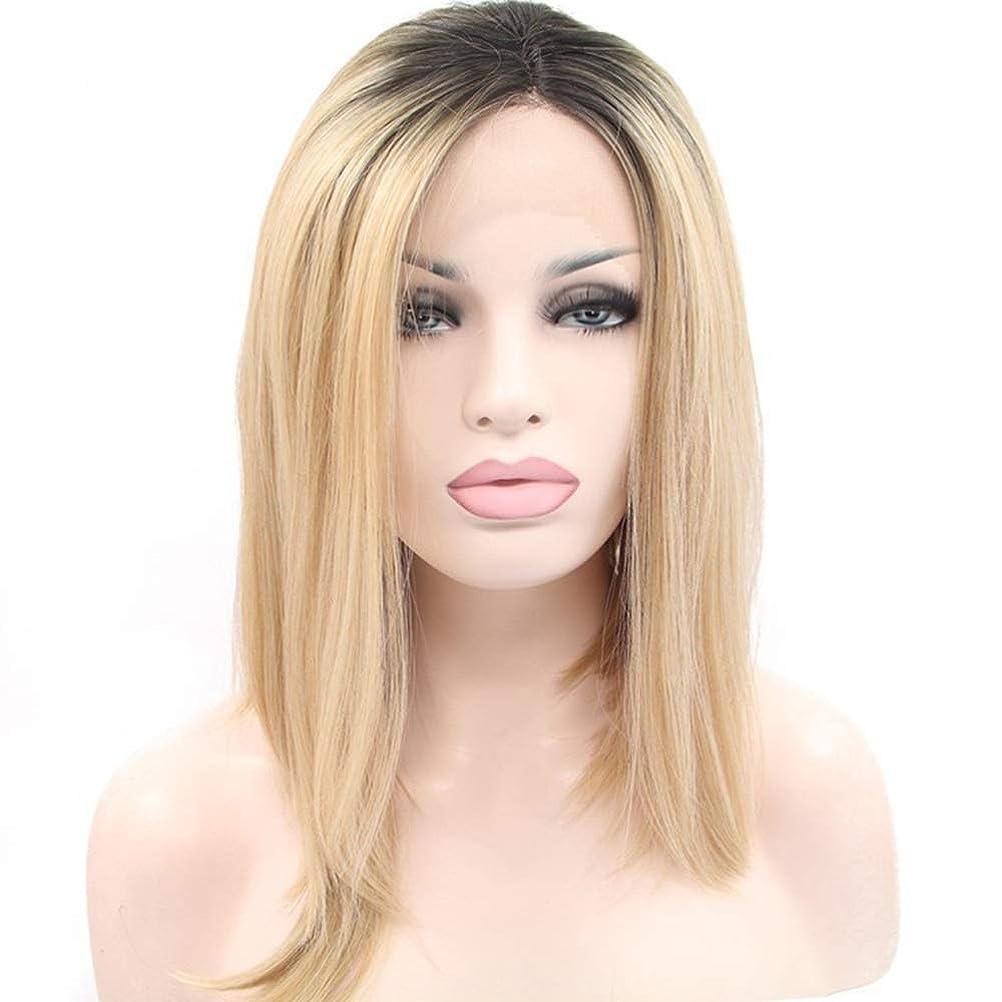 嘆願些細こだわりYrattary ファッション女性ロングストレートヘアコスプレかつら自然な合成レースフロントかつら合成ヘアレースかつらロールプレイングかつら (色 : Blonde)