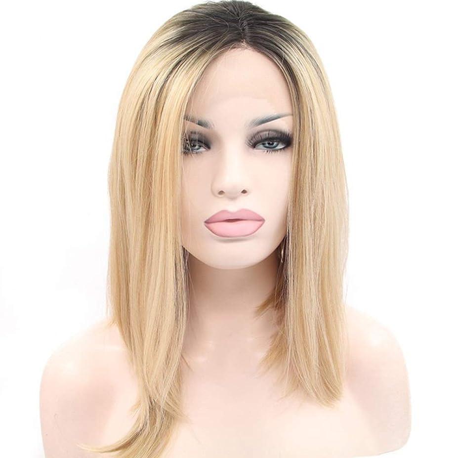 彼らのもの青写真戸惑うYrattary ファッション女性ロングストレートヘアコスプレかつら自然な合成レースフロントかつら合成ヘアレースかつらロールプレイングかつら (色 : Blonde)