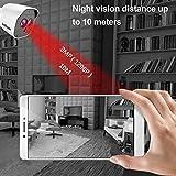Zoom IMG-2 telecamera di sorveglianza wifi srihome