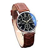 Ren He 腕時計 メンズ腕時計 機械式時計 ブルーレイガラス ベルト腕時計