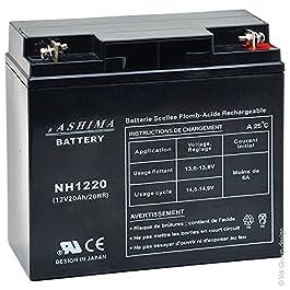 Tashima – Batterie moto NH1220 / NH1218 12V 20Ah