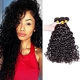 A ALIMICE HAIR Brazilian Hair Water Wave 3 Bundles Virgin Human Hair Bundles 100% Unprocessed Virgin Hair Bundle Deals No Shedding Weave Extensions (18 20 22)