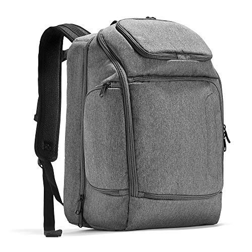 eBags Professional Flight Laptop Backpack - Best Computer Bag for Travel - Fits up to 15.6 Inch Laptop - (Heathered Graphite)