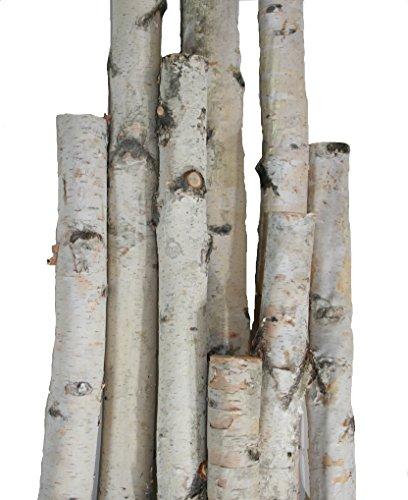 Wilson Enterprises White Birch Pole Pack (Medium) Set of 3 White Birch Pole 1.5-2.5 inch Diameter x 4, 5, and 6 feet Tall
